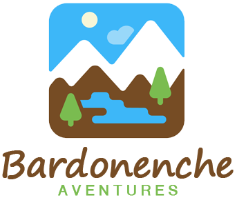 bardonenche.com